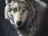 Gray Wolf, Pastel, 12x9